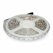 LED Strip SMD5050 - 60 LEDs 6400K IP65